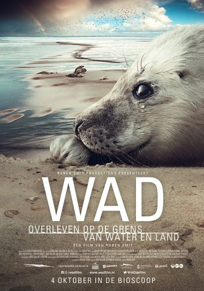 Wad-overleven-op-de-grens-van-water-en-land_ps_1_jpg_sd-low.jpg
